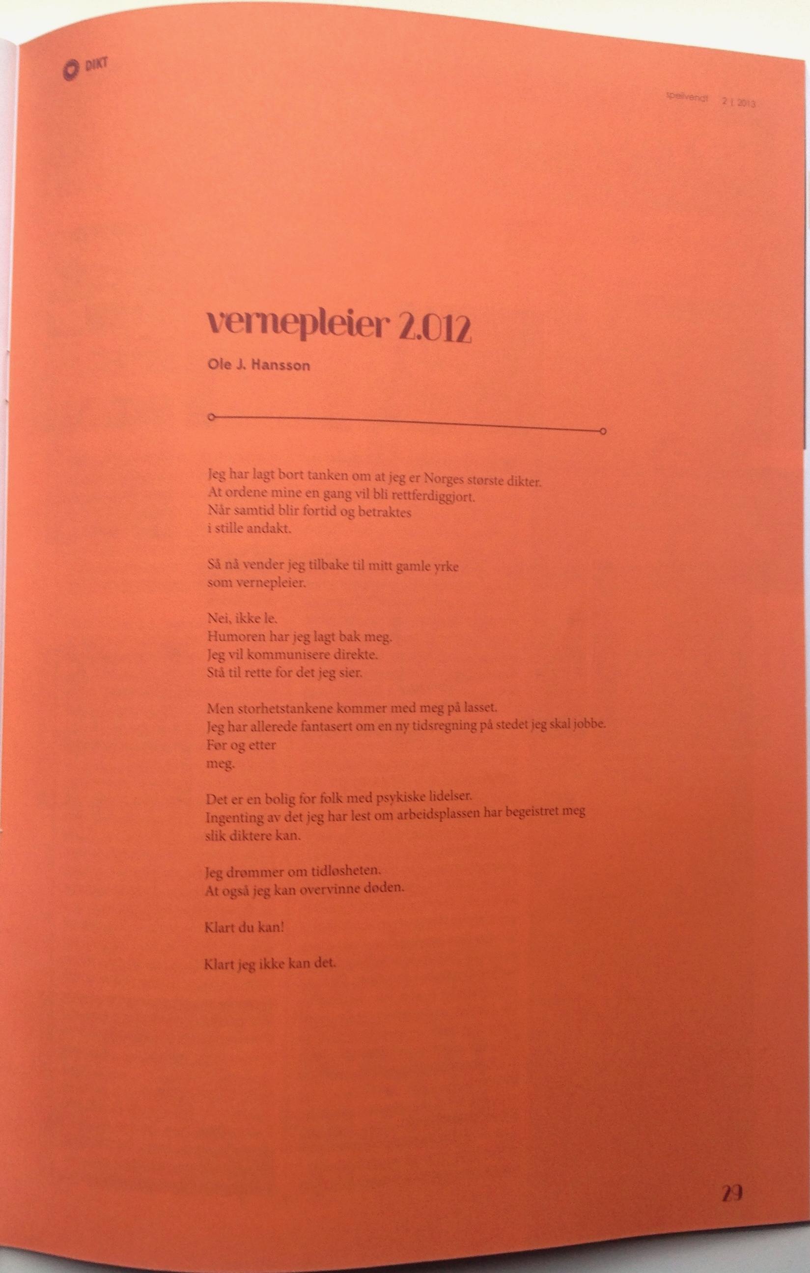 Vernepleier 2012 Speilvendt 2